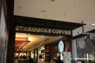 3D LED Back-lit Signs With Brushed Brass Letter Shell For Starbucks